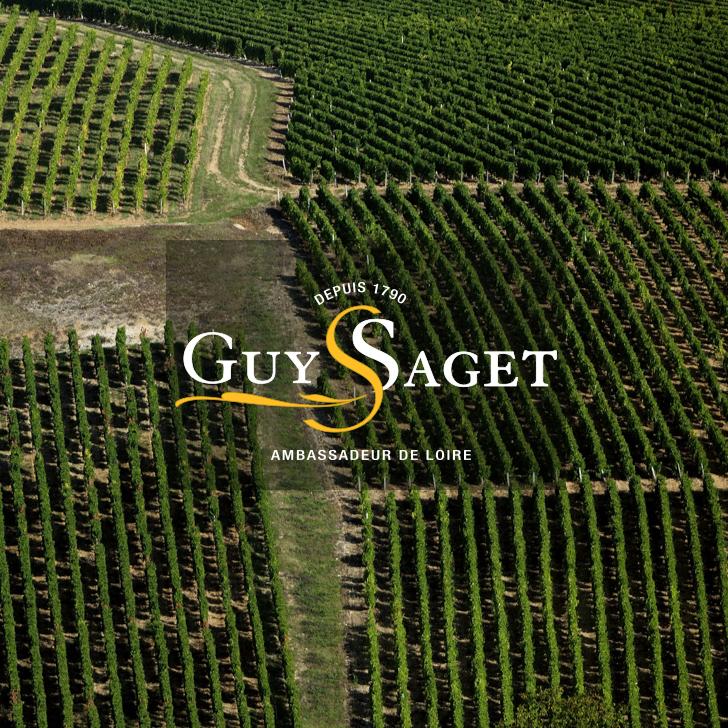 Guy Saget