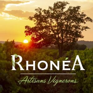 Wine Connexion - Coopérative Rhonéa - vins de la vallée du Rhône